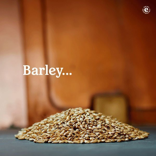 HeinekenCredentials 2017 Ingredients Barley